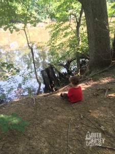 Gathering rocks to throw into the creek.