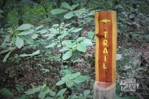 Trail sign is not subtle.