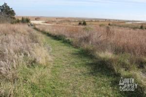 grasslandtrail04