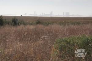 grasslandtrail05