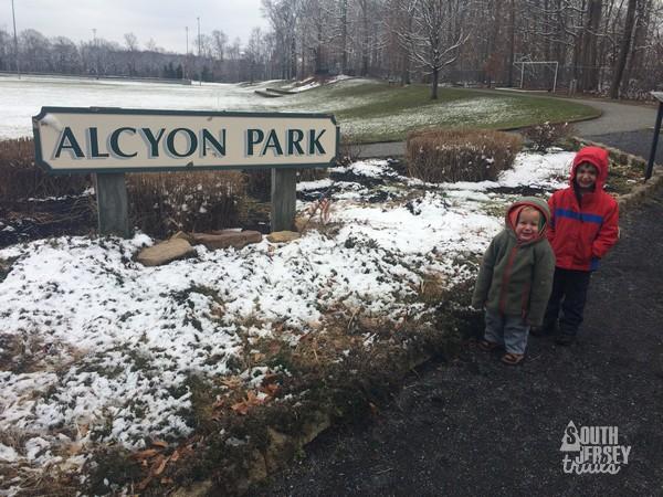 alcyon19