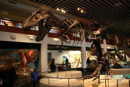 hadrosaurus00a