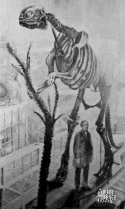 hadrosaurus03