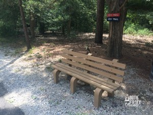 cambenches