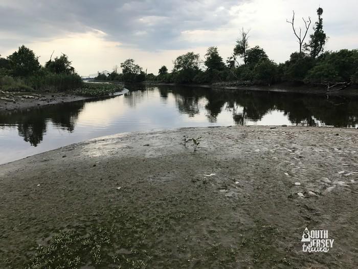 floodgateroad29